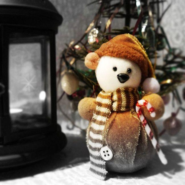 Прошлогодний арт - эксперимент с фонарем, снегомедведиком и маленькой елочкой, которой холодно зимой ))) Last year's art - an experiment with a lamp and a small Christmas tree, which is cold in winter, and little snowbear. новыйгод рождество икеа арт  омск сибирь снегомедведик фонарь Omsk Siberia NewYear Christmas Winter IKEA Art Snowbear Lantern