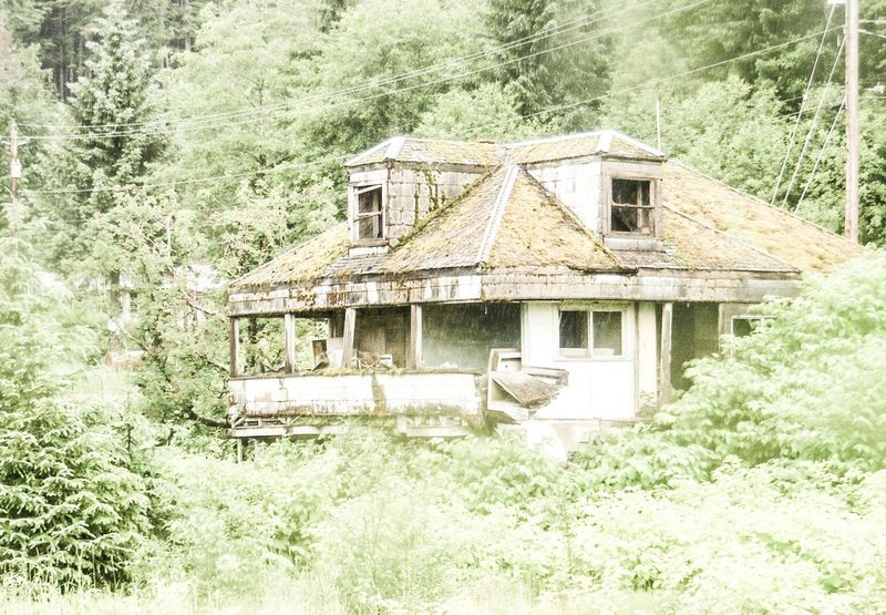 Taking Photos Photos By Jeanette Alaska Ketchikan Abandoned Buildings Abandoned Places Abandoned House Moss-covered Trees Pastel Pastel Colors Pastel Green Empty Nest Empty Places Creepy House Check This Out Walking Around Enjoying Life Dampness Falling Apart Unsafe Building Pastel Power