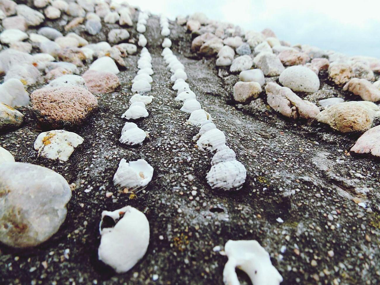 Rocks Natural Caracola Beach