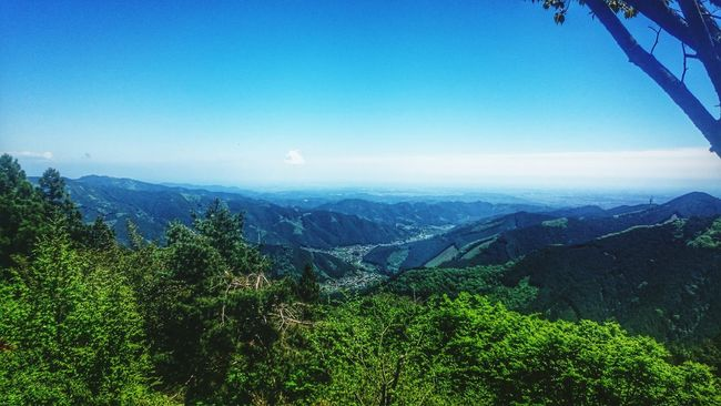 Climbed Mt.Mitake in Okutama in Tokyo. l could feel great nature🌱 Mountains Mt.Mitake Okutama Tokyo,Japan Nature Photography Nature Lover Top Nature_collection Nature