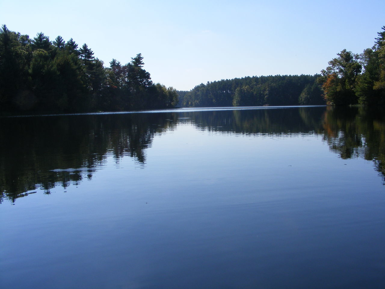 reflection, tree, water, lake, tranquil scene, nature, beauty in nature, tranquility, scenics, no people, blue, outdoors, day, sky