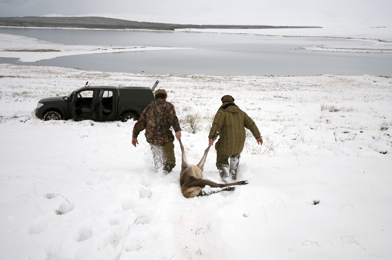 Beautiful stock photos of hunting, Achievement, Beauty In Nature, Cold Temperature, Day