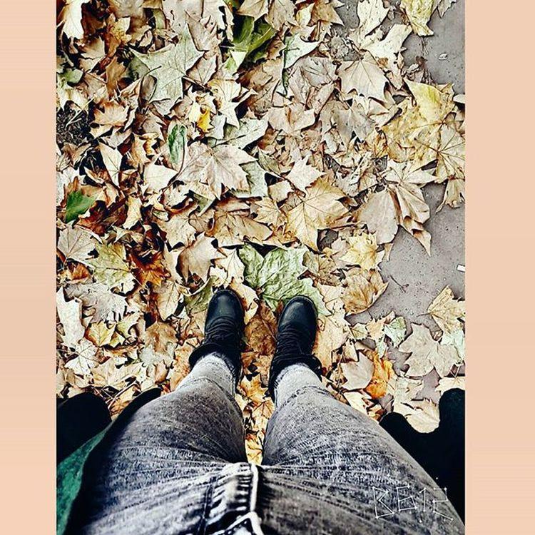 Baharları sevdiğimi söylemişmiydim..😊 Sonbahar volm2 🍁 Ensevdigim  Aylar Bahar Ayları Yağmur Rain Autumn Sonbahar Sarıyapraklar Ekim Mevsim Doğa Green Yellow 20likes Follow4follow Tweegram Instacool Amazing Like4like Tagsforlikes Swag Igers Streetphotography VSCO vscocam instagramhub street anıyaşa photooftheday
