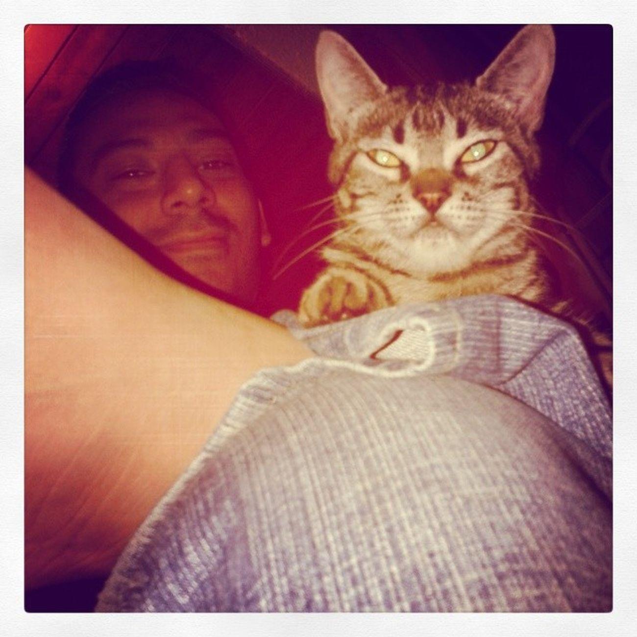 Ambos rostros Cat Miniña