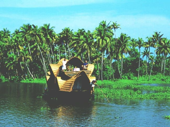 God's own country! Water Tree Nature Kerala GodsOwnCountry Photography Love Lifeisbeautiful Palm Tree Outdoors Lake Sky Day First Eyeem Photo FirstEyeEmPic Photo Of The Day Photography Is Life Love Life Lovely Weather Loveit