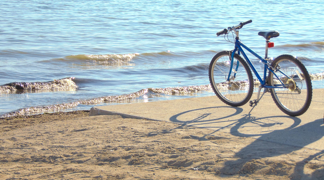 beach, sand, sea, nature, outdoors, day, water, bicycle, no people, shadow, animal themes, bird