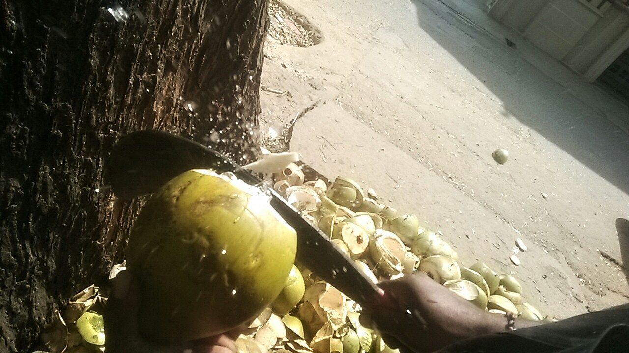 Coconut Coconutwater Imrankhan Collection