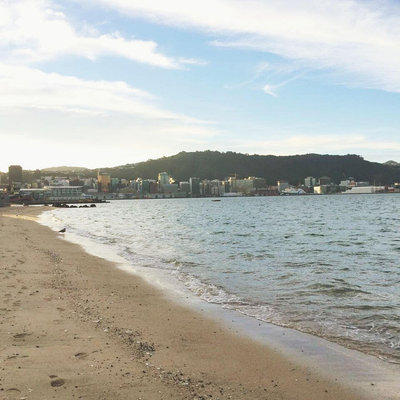 Oriental Bay Wellington  New Zealand New Zealand Scenery Beach City City Escape Run Away