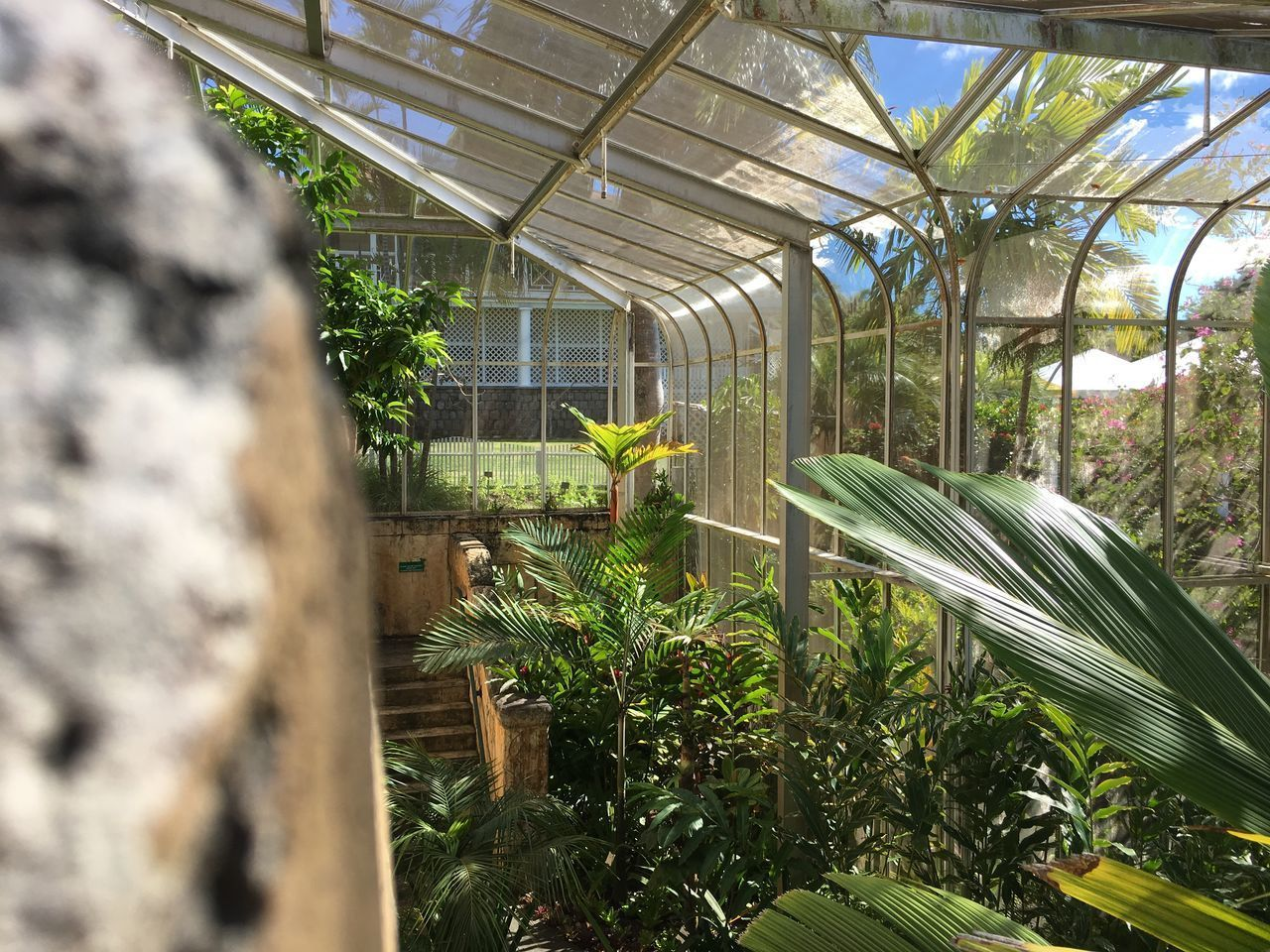 Botanical Gardens Day Deity God Kids Life Nevis Four Seasons Parrot Scenery Spirituality St.KItts&Nevis Volcano