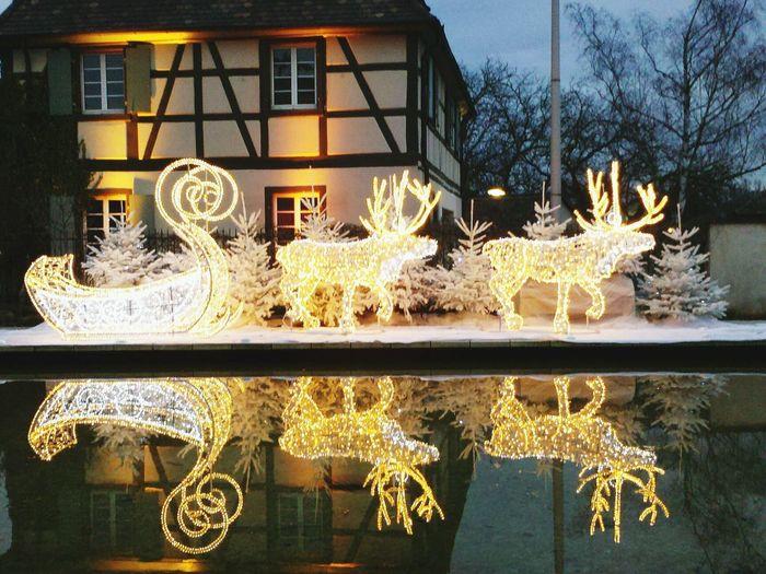 Christmas Decorations Rudolph Ilumination