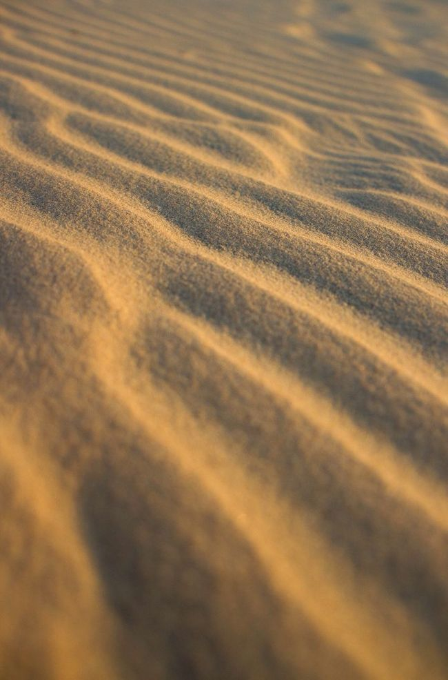 Sand Desert Lines In Sand Selective Focus Sand Only Pattern Golden Sand