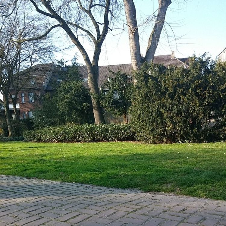 Sonne genießen im Wallgarten Uerdingen Krefeld Sonne