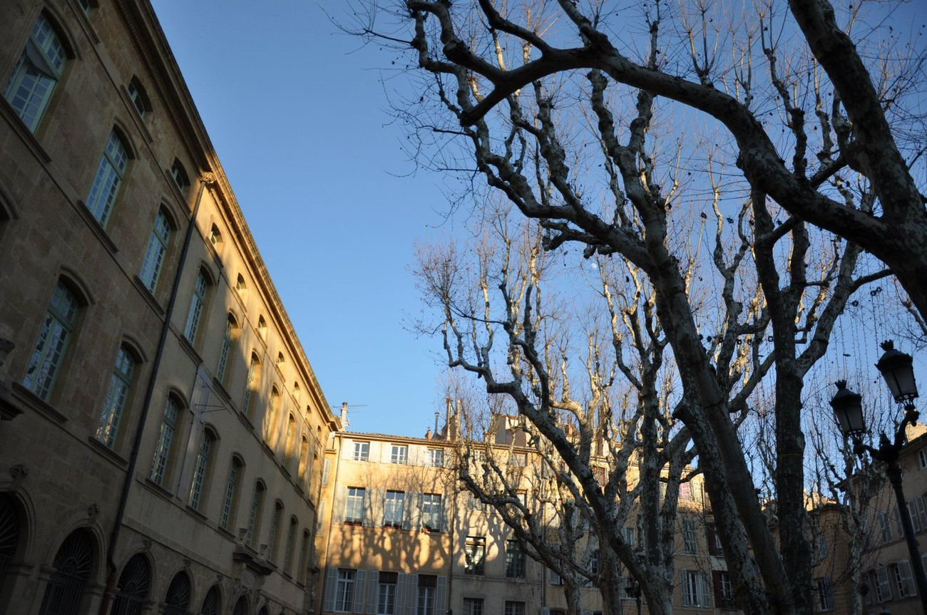 Aix En Provence Blue Winter Sky Platane And Bui