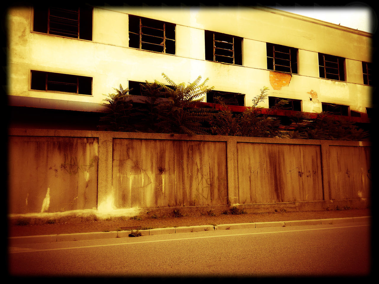 Empty Road Beside Building