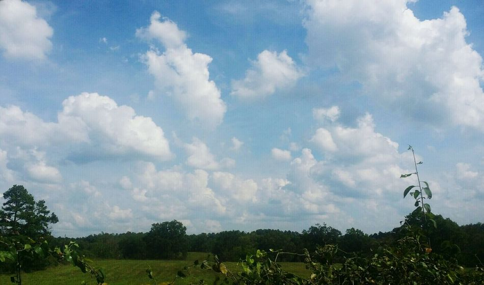 Cloud - Sky Beauty In Nature Landscape Cloudscape Sims Freshness Tranquility
