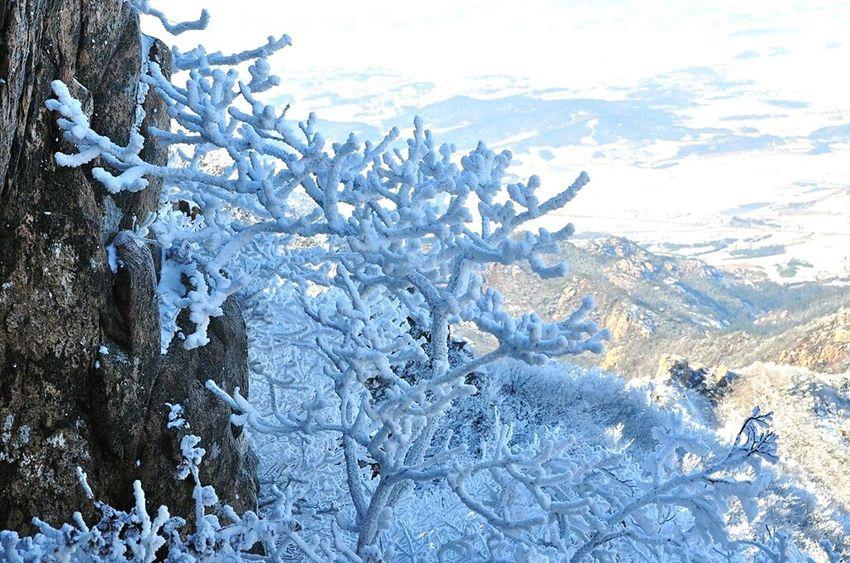 Wolchulsan National Park In Korea Winterwonderland Nature Photography Snowwhite Last Winter Wintertraining Snow❄sky On The Mountain Snow Photography In Korea