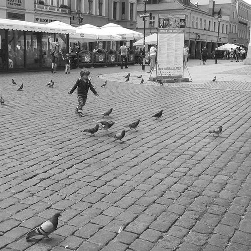 Toruń Blackandwhite Photography