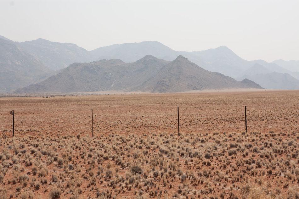 Beautiful stock photos of desert, Arid Climate, Bush, Day, Desert