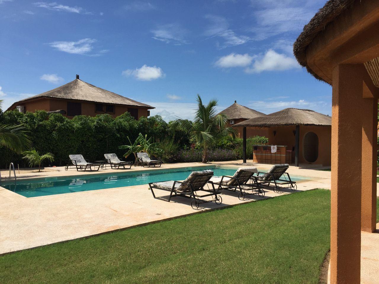 Blue Sky Bluesky Day Grass Green Holiday House House Palm Palm Trees Pool Tree