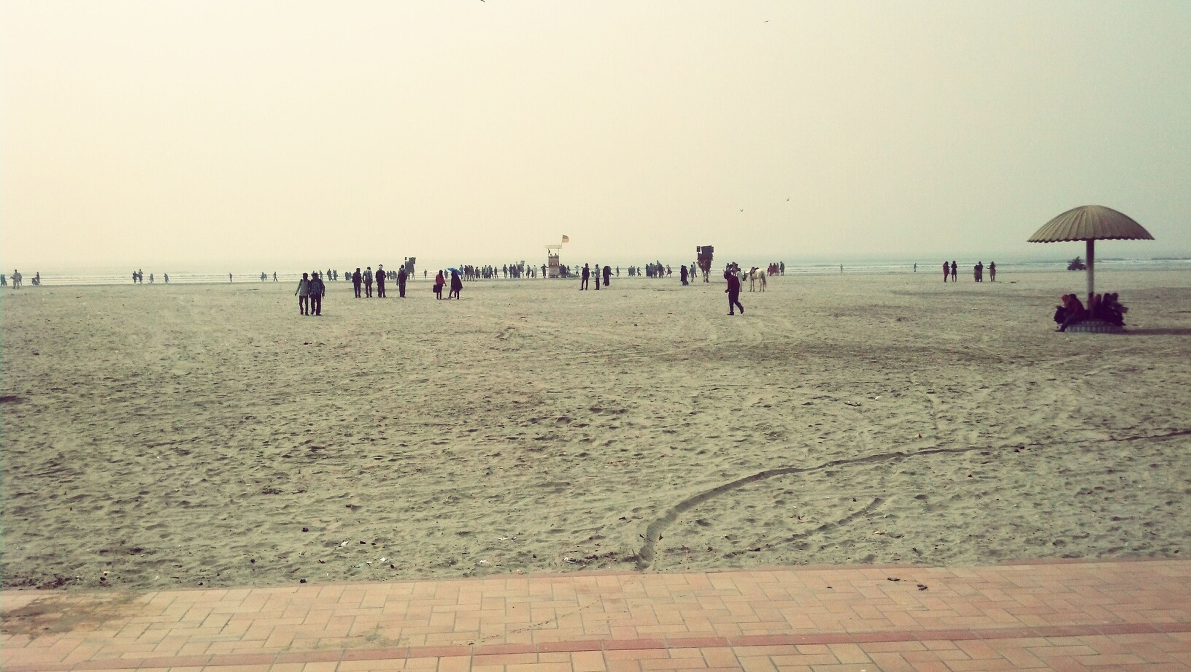 sea, beach, large group of people, water, horizon over water, sand, shore, clear sky, vacations, copy space, leisure activity, mixed age range, lifestyles, men, person, scenics, tranquil scene, nature, beauty in nature