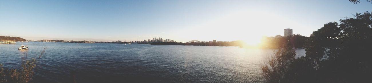 Enjoying The Sun Panorama