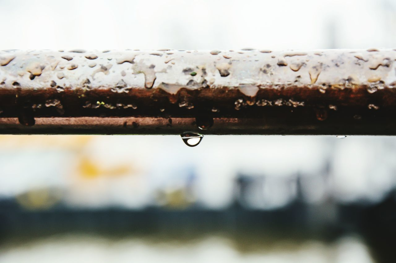 Beautiful stock photos of rain, , Close-Up, Focus On Foreground, Germany