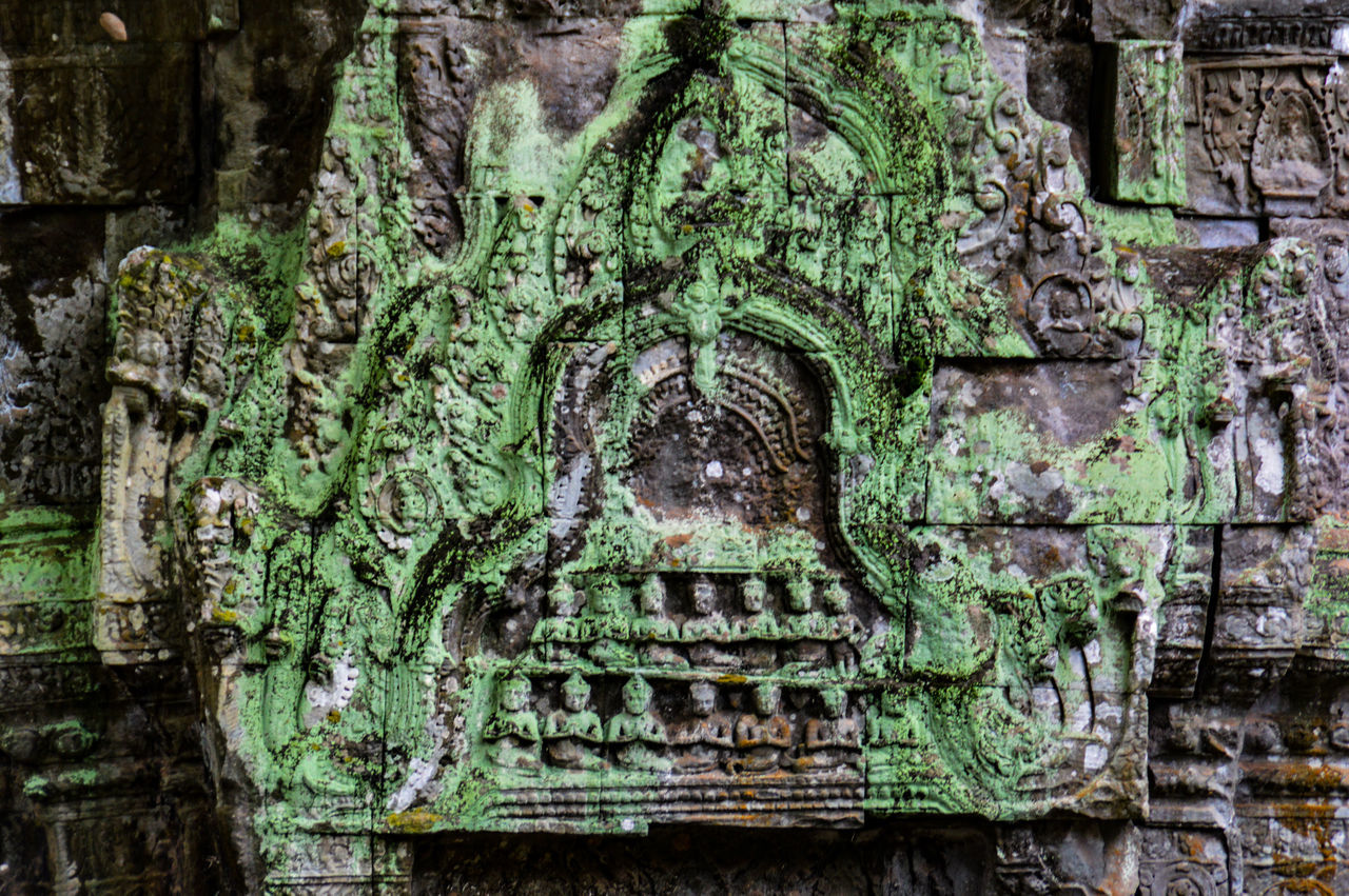 Close Up Moss & Lichen Moss Covered Stone Wall Ta Phrom Ta Phrom Temple Spirituality Ancient Civilization Siem Reap, Cambodia UNESCO World Heritage Site Travel ASIA Tourism Travel Destination Khmer Empire