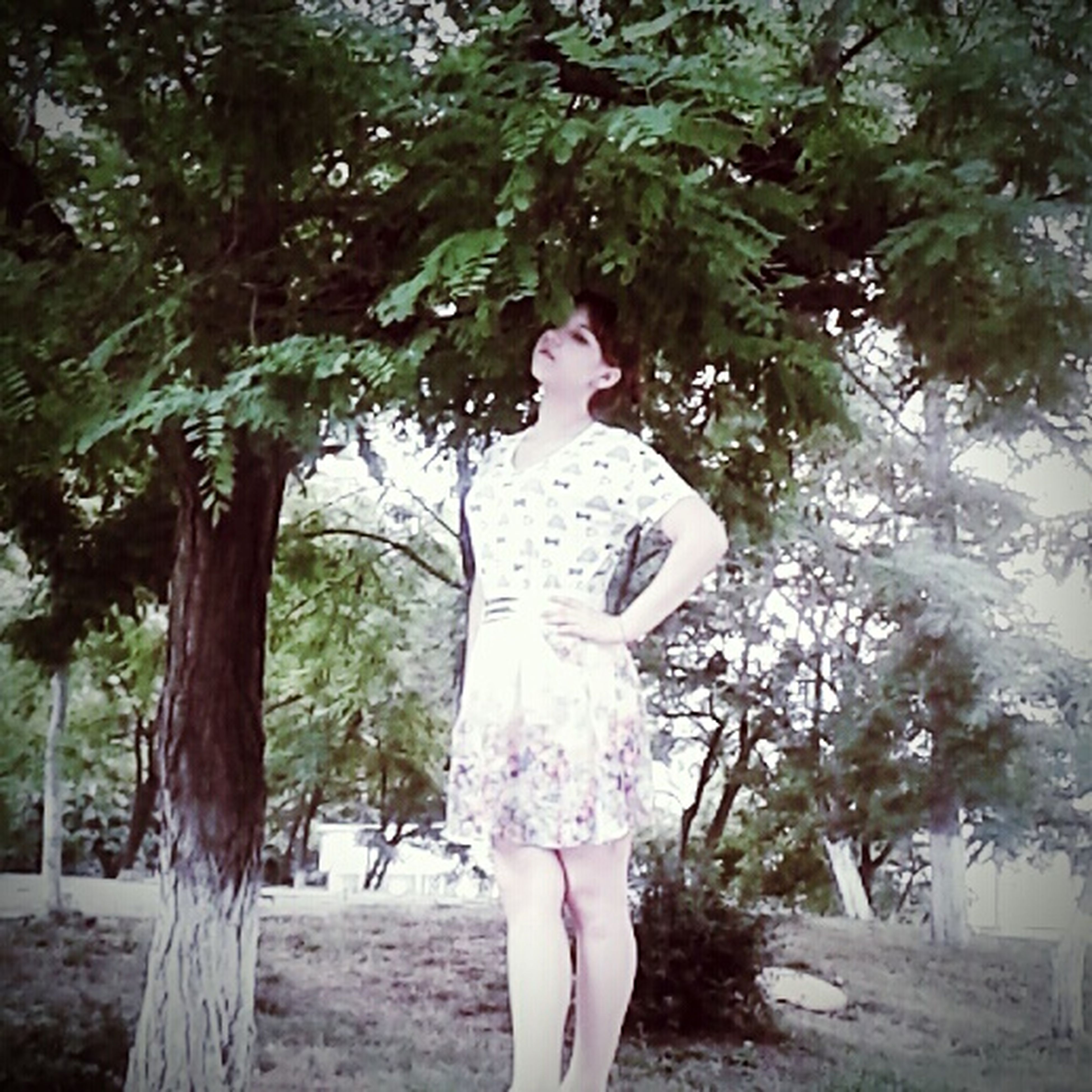 tree, lifestyles, leisure activity, standing, tree trunk, casual clothing, full length, young adult, young women, person, dress, three quarter length, sunlight, day, park - man made space, nature, rear view