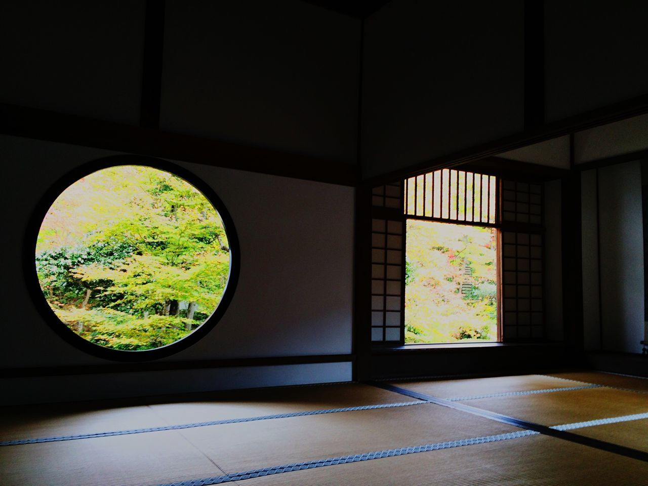 indoors, window, no people, day, home interior, tree, architecture, close-up