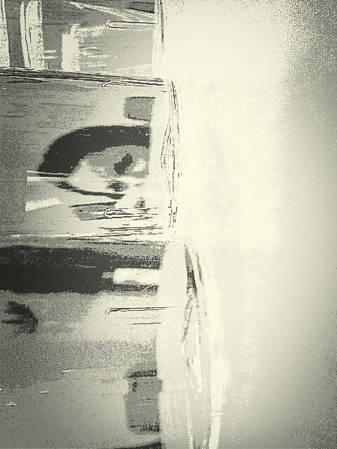 Fotosafarimtv
