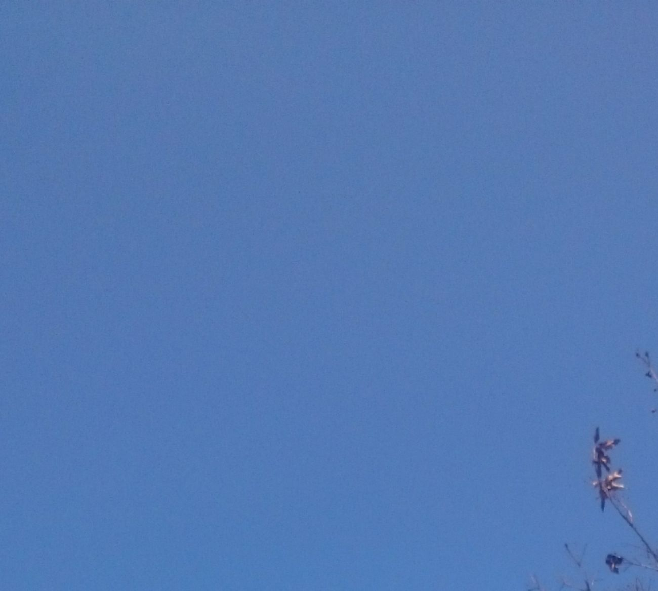 おはようございまーす 月曜日 笑顔でいこーね 美里 あおぞら 青空 今空