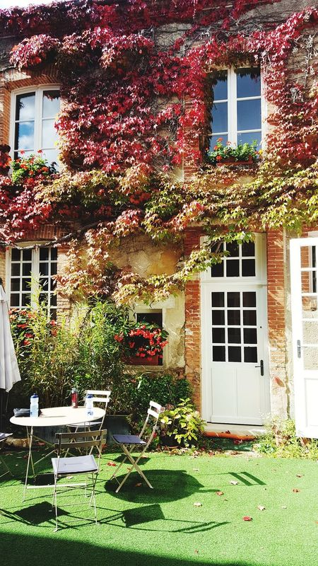 Building Building Exterior France 🇫🇷 France Champagne Savoirvivre No People Light And Shadow Romantic Romantic Landscape Romantic Building Built Structure Ivy Outdoors Day Grass Window Box Flower