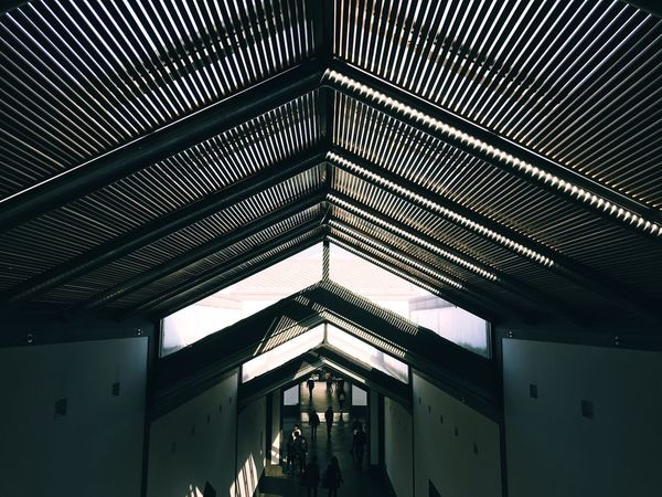 Ceiling Architecture Indoors  Built Structure Low Angle View No People Day Lines And Shapes Lines Sharp Shadow Contrast And Lights The Architect - 2017 EyeEm Awards