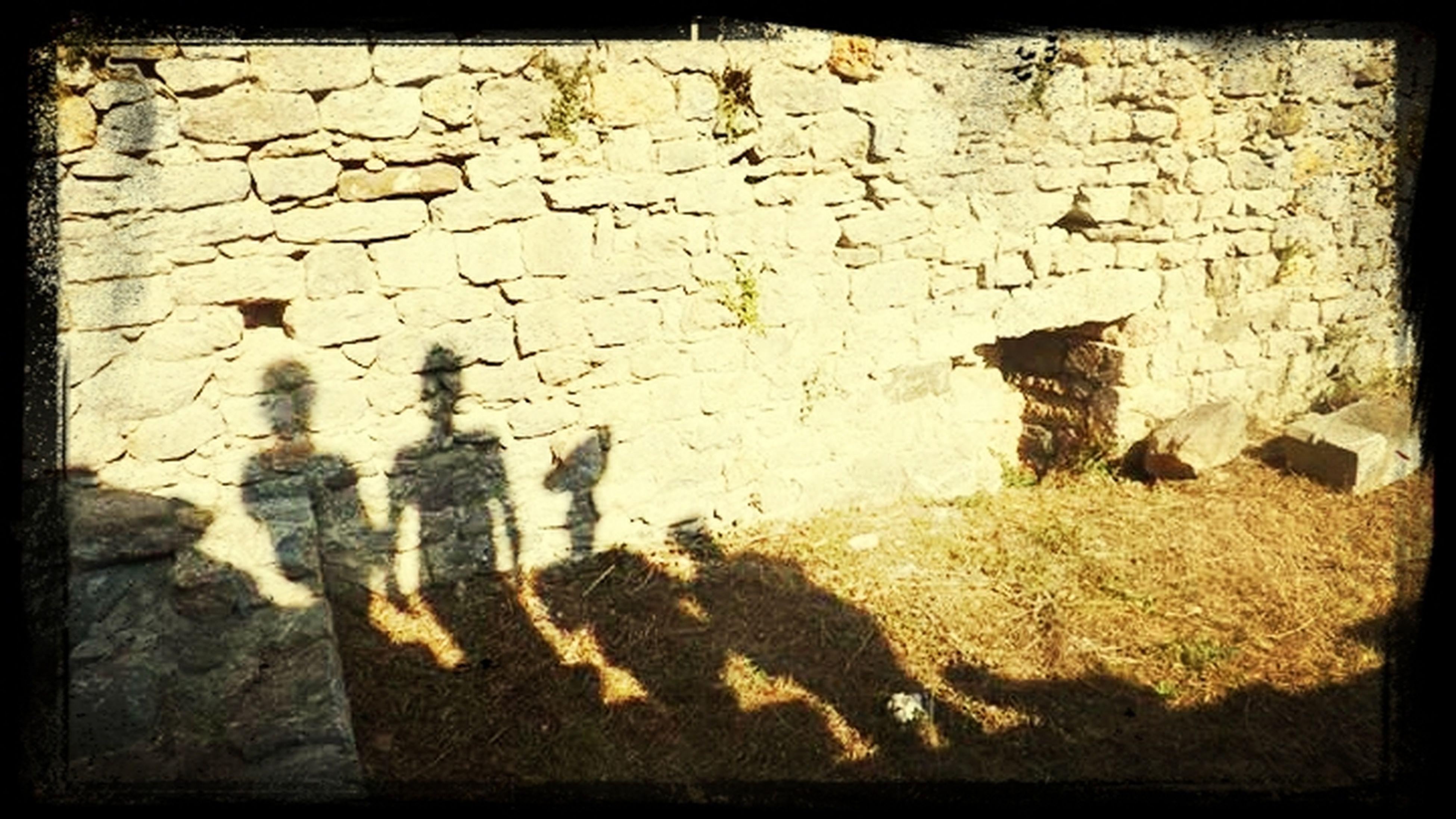 Dalton Brothers Rantanplan Shadow-art