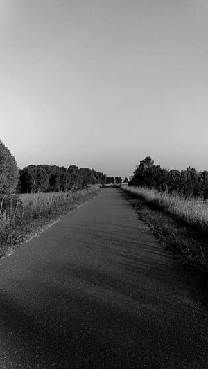 The Way Forward Road Tranquility Nature Non-urban Scene Outdoors Solitude Foreveralone Alone Tree And Sky Argine Di Po Street Peace Peace And Quiet Paceful Rural Scene Happiness Blackandwhite No People Nature_perfection