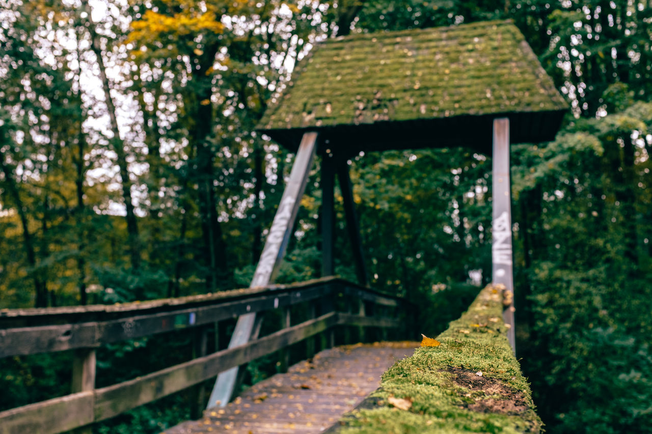 Wooden Footbridge Amidst Trees In Park