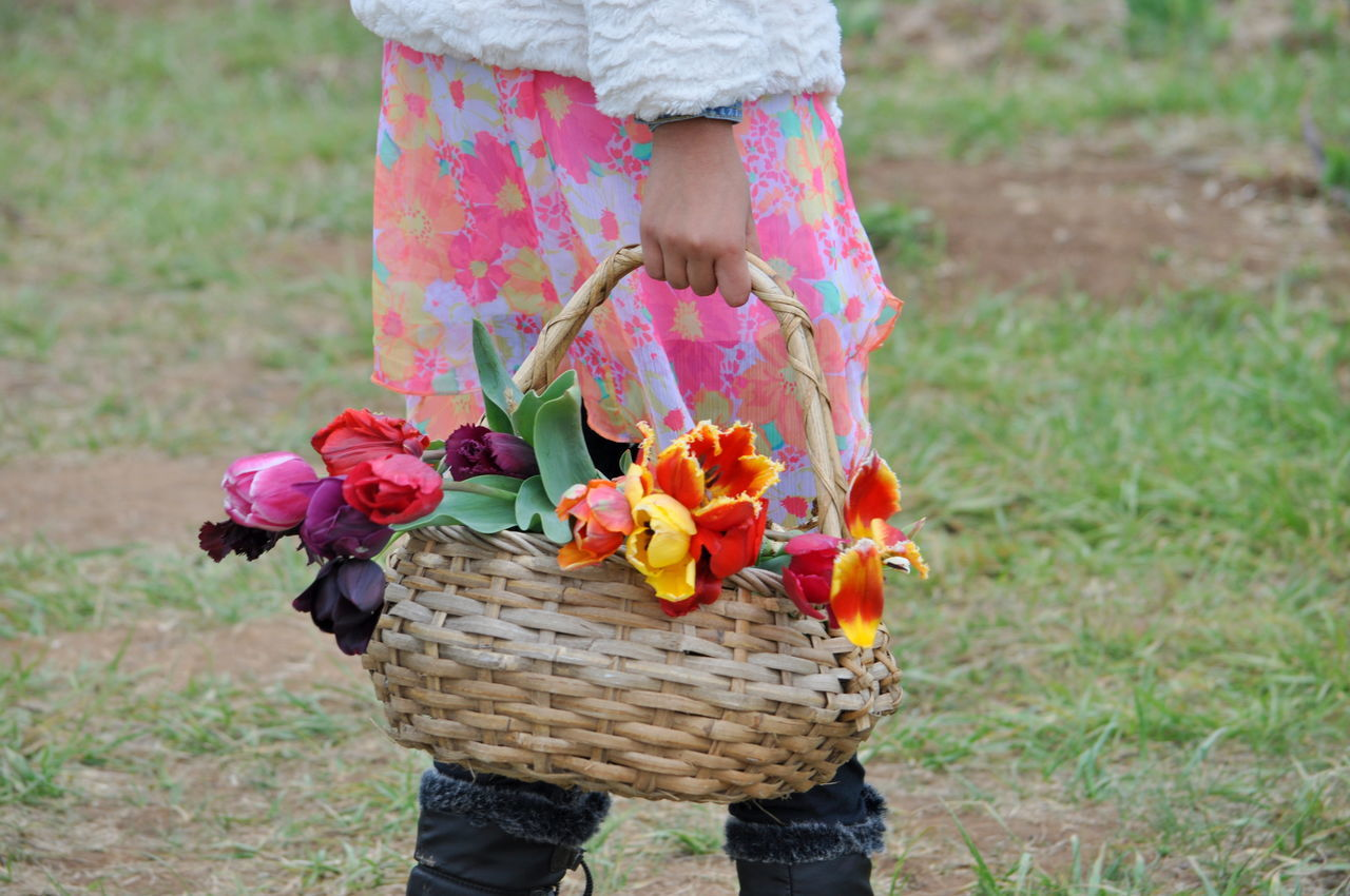 basket, flower, one person, holding, outdoors, low section, human body part, childhood, picnic basket, field, grass, day, leisure activity, flower head, petal, nature, freshness, human hand, standing, people, girls, picnic, fragility, close-up, child, adult