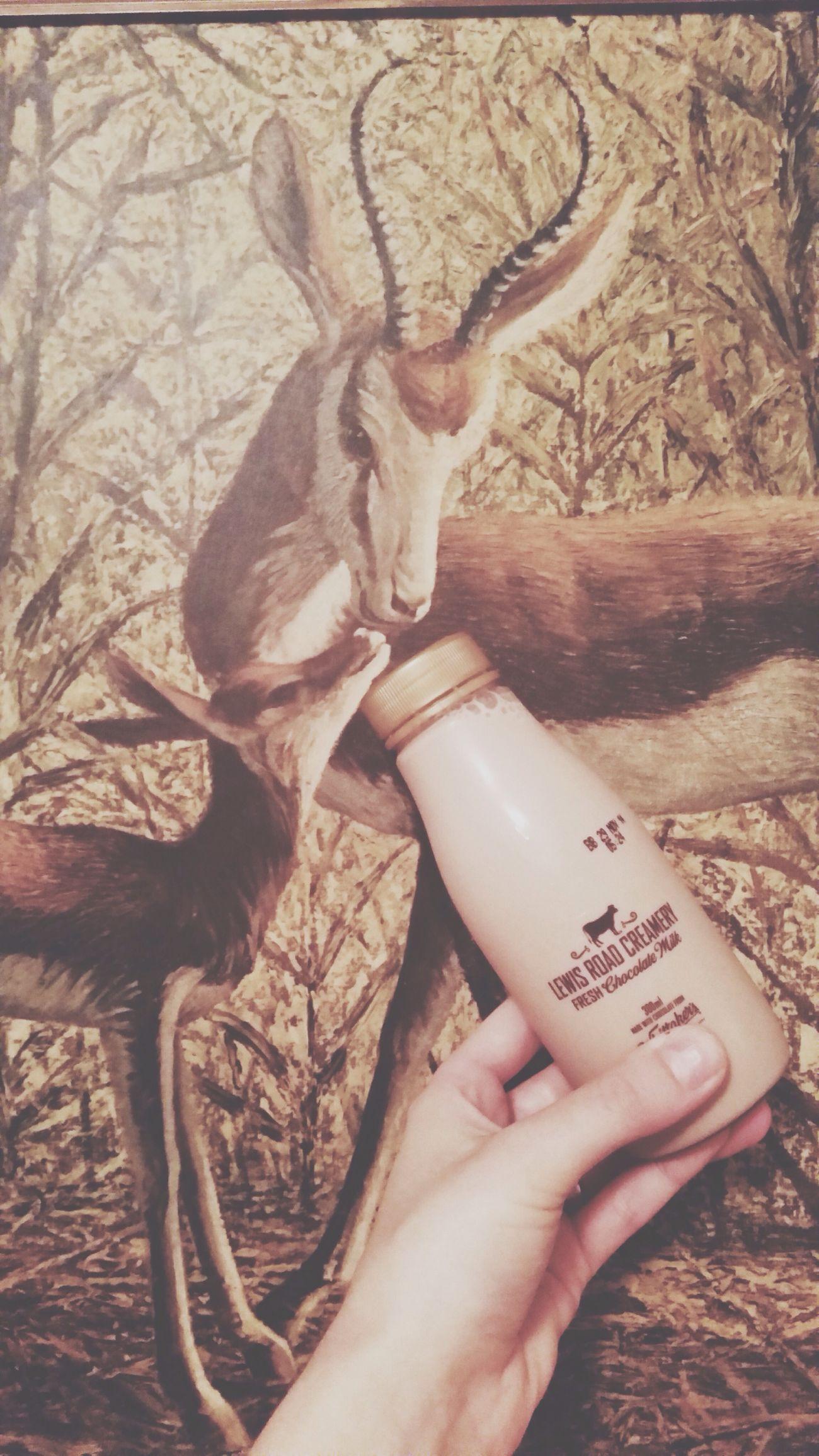 slurp . Chocolate Milk Lewisroad Drank