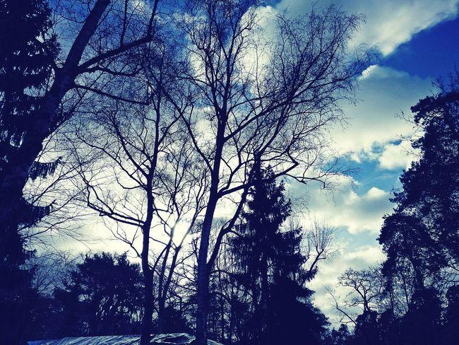 Die Wintersonne genießen.