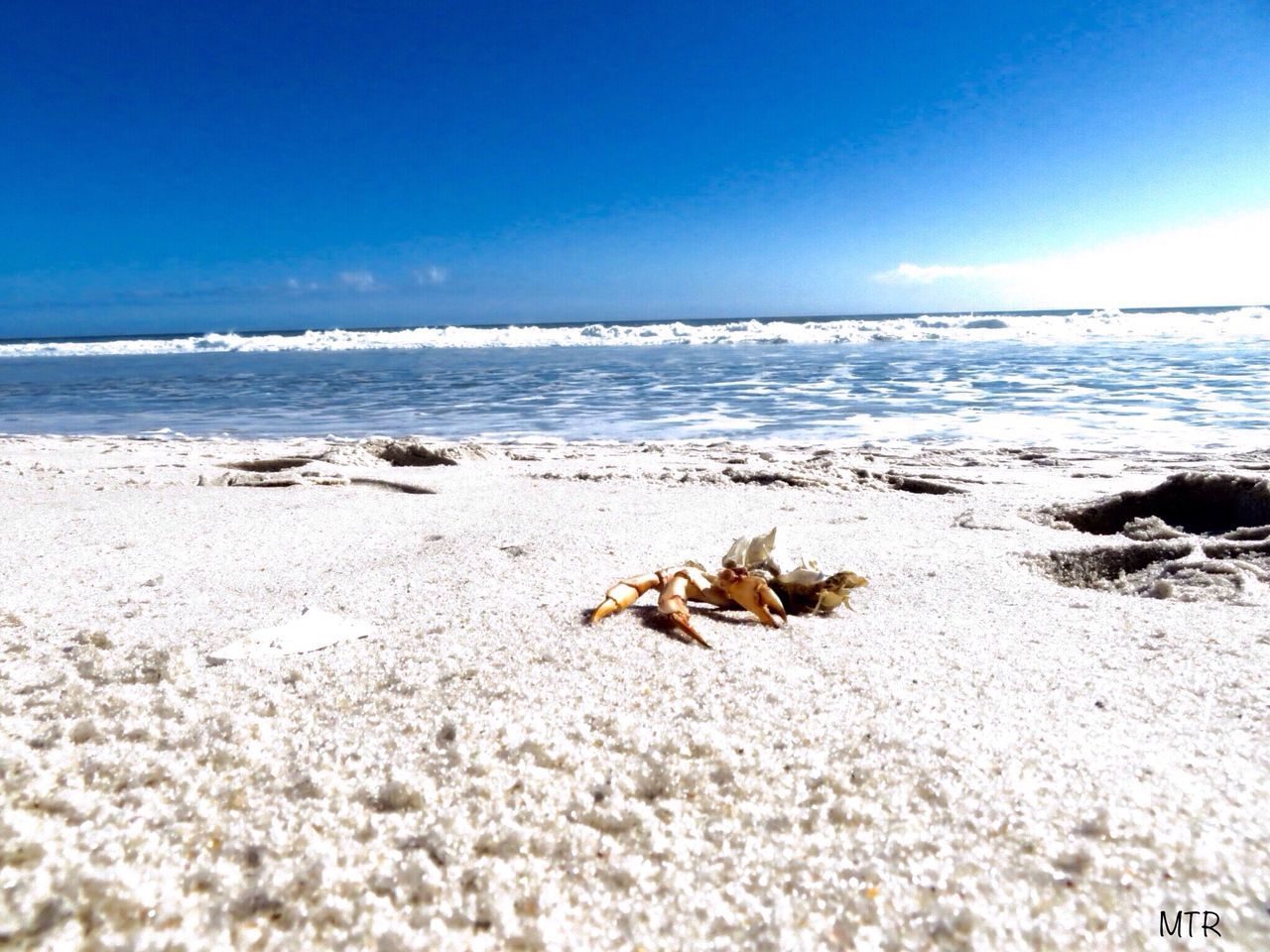 Sea Nature Beach No People Beauty In Nature Sunlight Scenics Tranquility Sky Sand Outdoors Water Summer's Coming Smithpoint Beach Shore SouthShore Beach LongIslandNY Fireislandnationalseashore