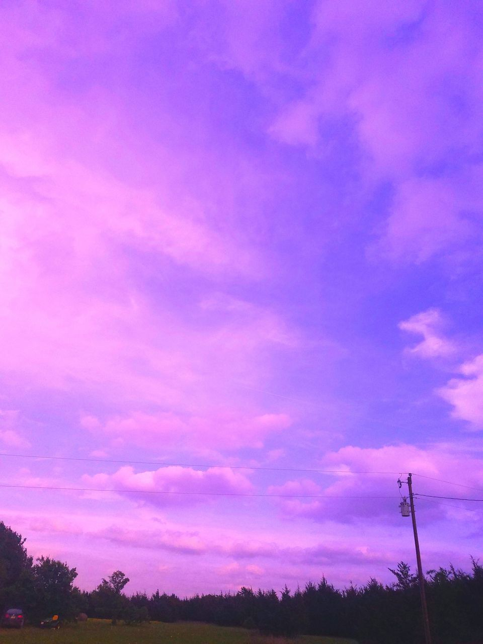 sky, nature, beauty in nature, purple, scenics, pink color, tranquil scene, no people, tranquility, cloud - sky, outdoors, tree, low angle view, sunset, day