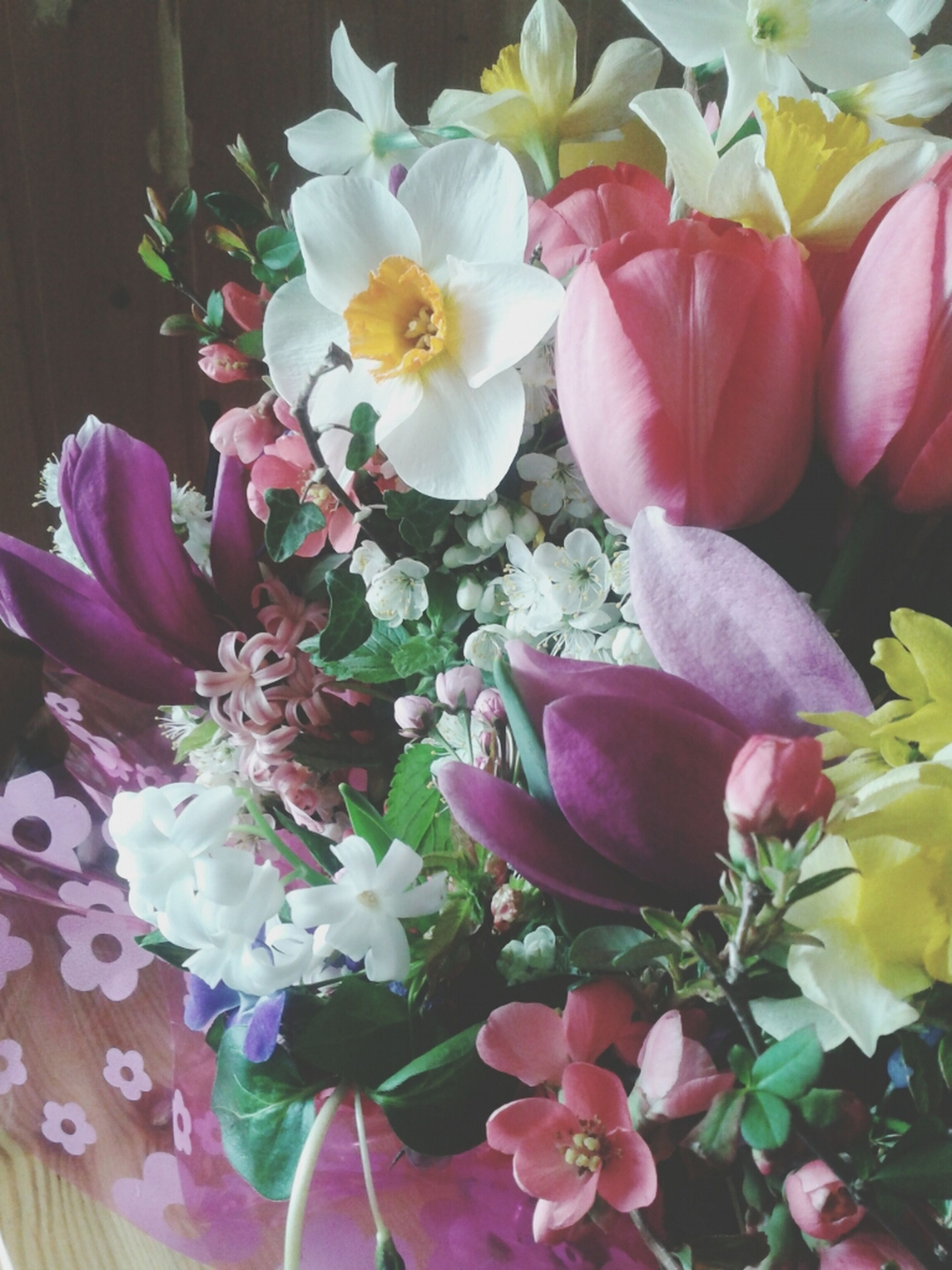 flower, petal, freshness, fragility, flower head, beauty in nature, indoors, growth, pink color, nature, close-up, blooming, white color, plant, high angle view, bouquet, no people, tulip, blossom, vase