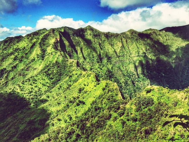 Dream less, adventure more! Extremehiking Oahu, Hawaii Skinnyridges Nofear Adventure Ontopofamountain Thisismyplayground Myhappyplace Eyeemnaturelover