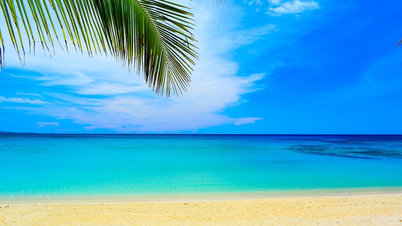 Seaside. Horizon Over Water Cloud - Sky Tranquil Scene Beauty In Nature Vacations Sea Tropical Climate Beach Outdoors EyeemPhilippines Eyeem Philippines TravelPhilippines Travel Photography Drastic Edit Palm Tree Sky Blue Ocean View Summertime Eyeem Ilocos