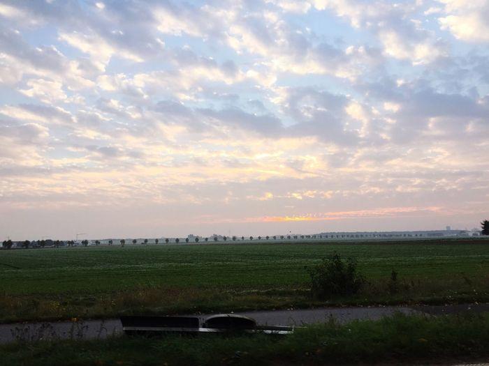 Morning Glory First Eyeem Photo