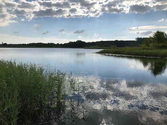 Nature Water Sky Tranquil Scene Tranquility Beauty In Nature Scenics Reflection No People Cloud - Sky Lake Outdoors Landscape Day Tree Growth Grass