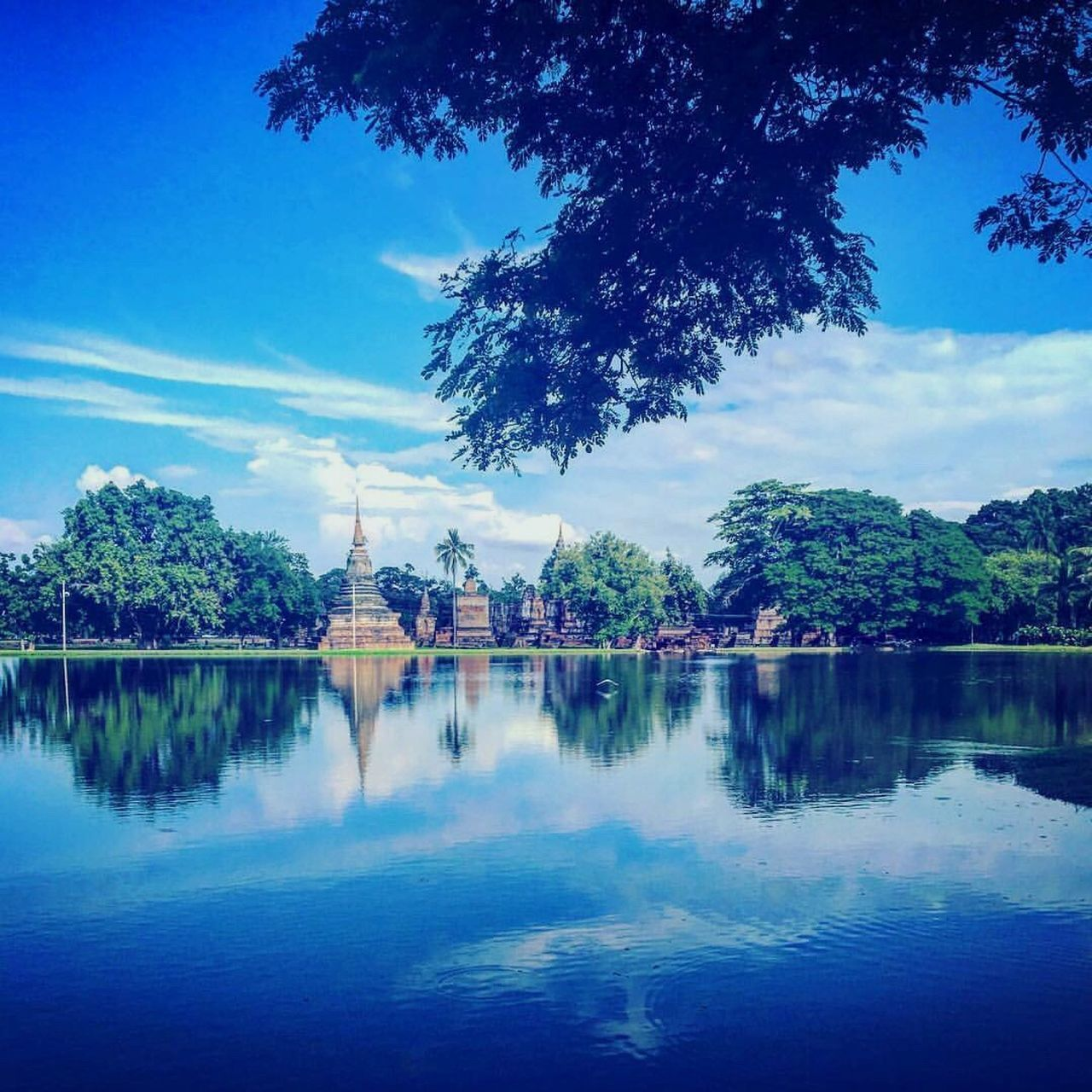 Sukhothai Tree Water Reflection Architecture Built Structure Building Exterior Lake Waterfront Sky Tranquility Travel Destinations Nature Tranquil Scene Outdoors No People Beauty In Nature Reflection Lake Scenics Day