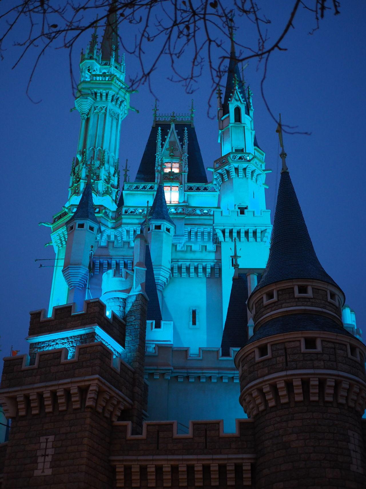 Architecture Travel Destinations Palace Disneyland Cinderella Tokyo Japan Light Night
