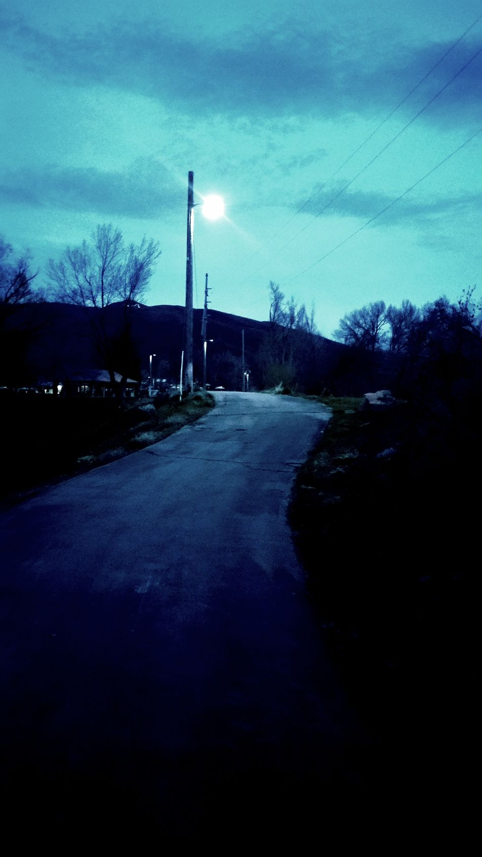 Original Photo Nature Original Original Photography Original Edits Bestshot Utah Streetlamp Night Night Time Favorite Favorite Place Ever favorite Favorite Place Park Riverside