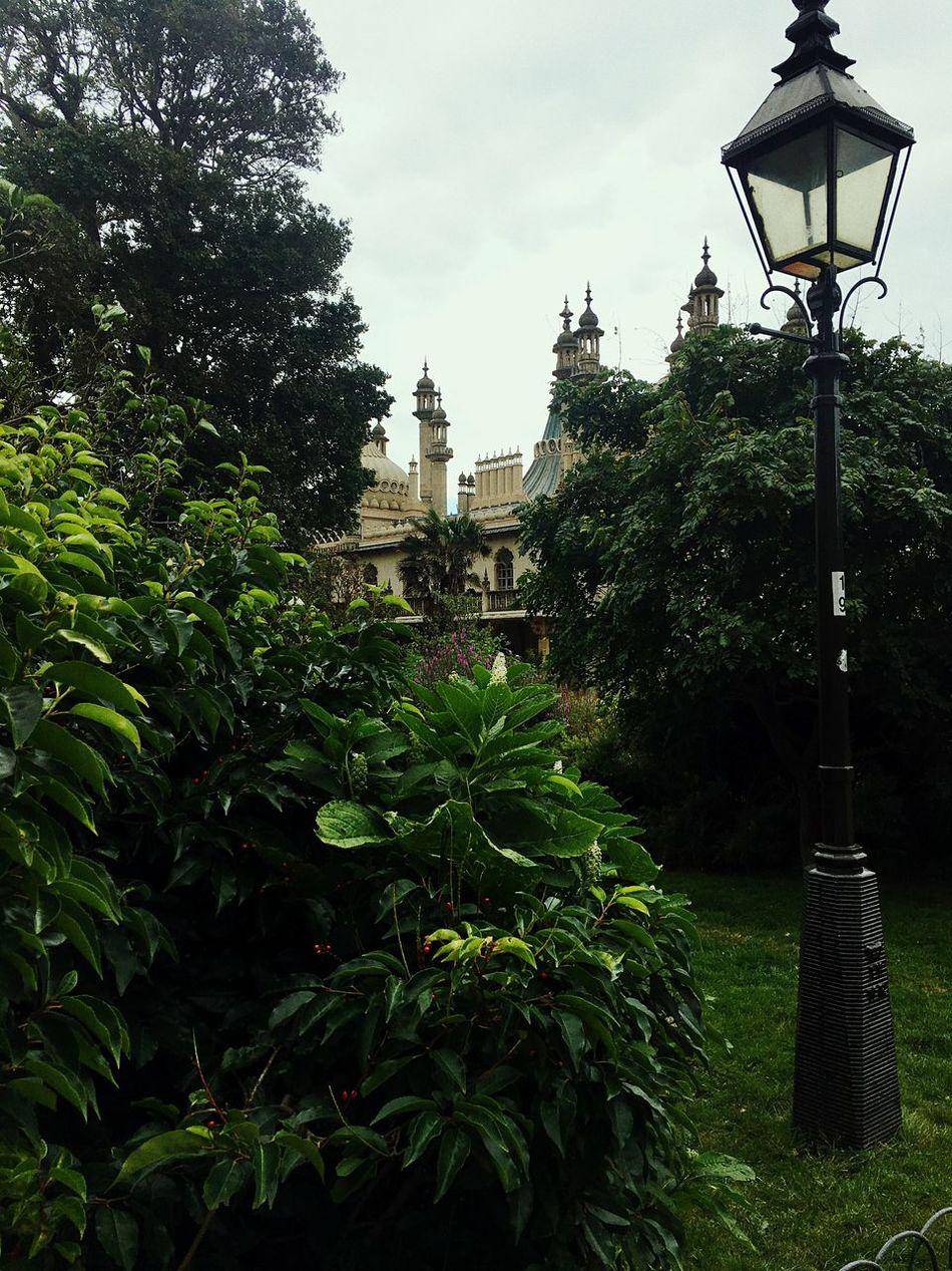 Beautiful stock photos of garden, Building Exterior, architecture, built Structure, castle